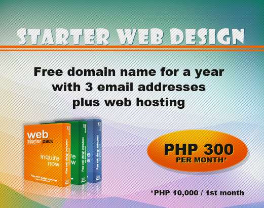 starter design package with web hosting